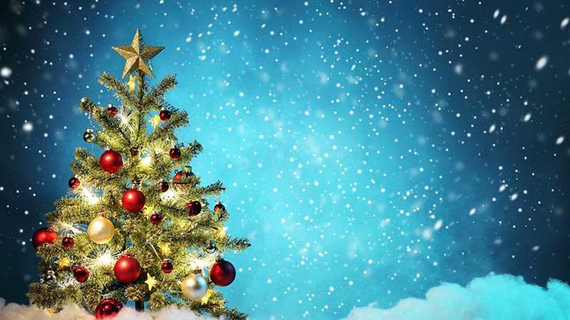 خرید درخت کریسمس در تهران